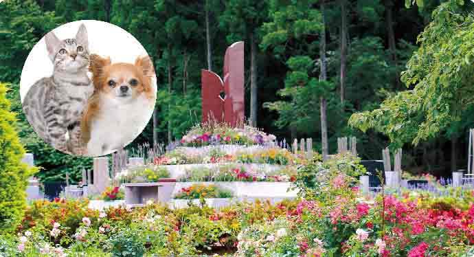 ペットと一緒に入る樹木葬