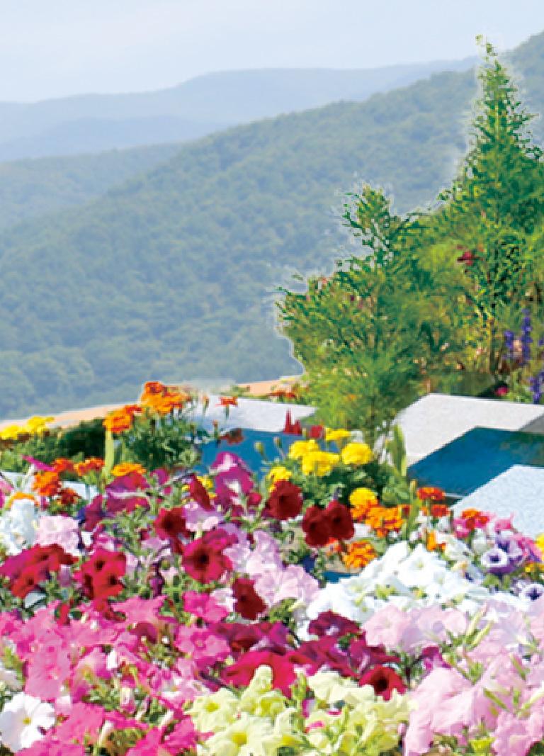 八ヶ岳フラワージュ